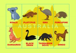Play me Kiddo Animals Australian